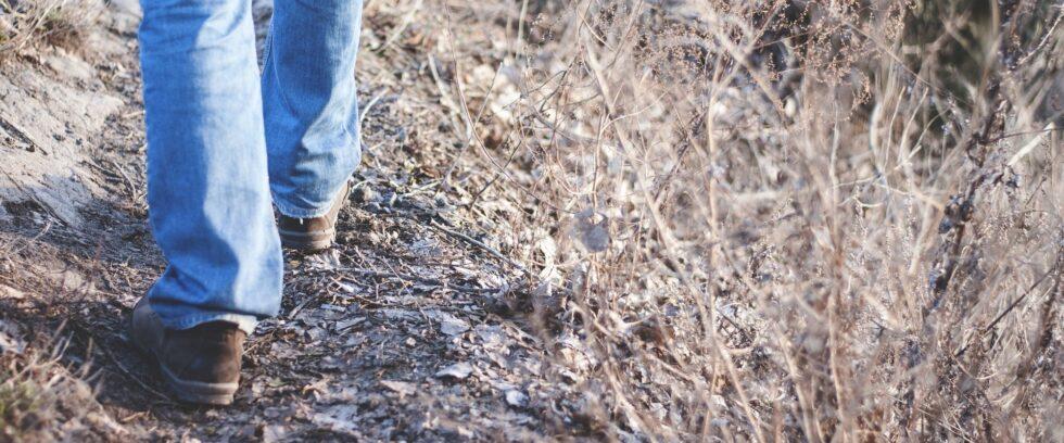 Ecopsychology: Finding a Place